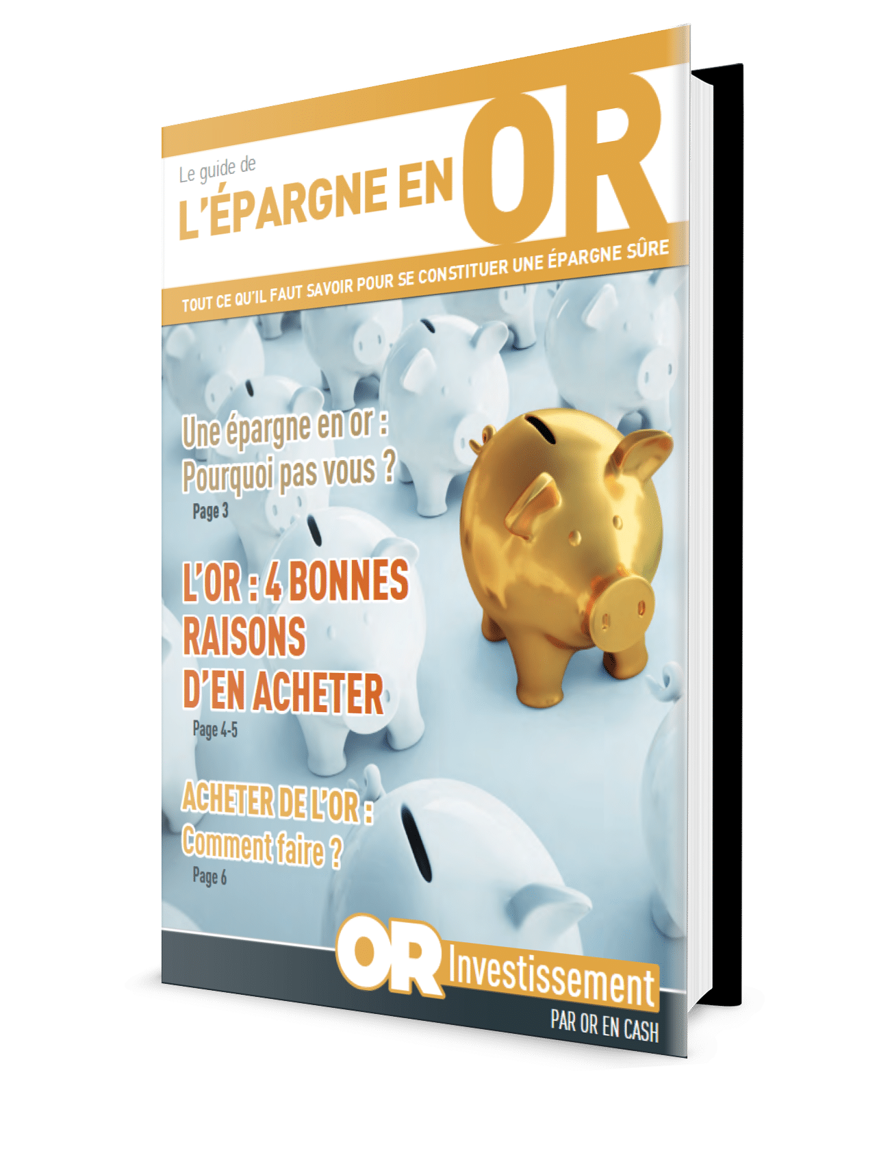 guide or investissement