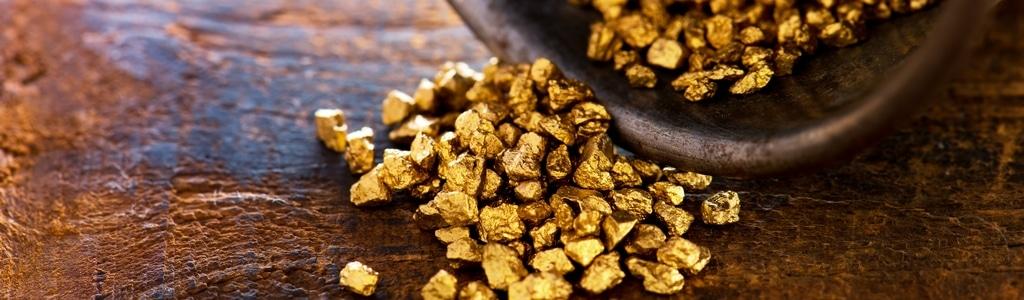 Pépites d'or dans un tamis